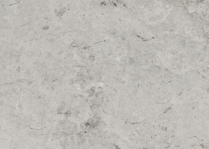silver-tundra